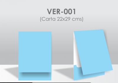 VER-001